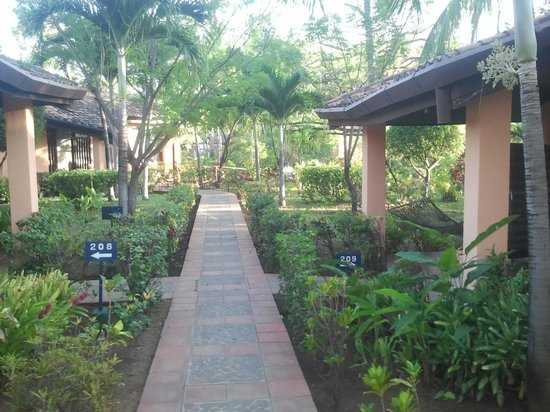 Barcelo Montelimar Beach: Bugallow side walk