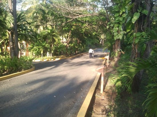 Barcelo Montelimar Beach: Street in ressort (street between bugallows)