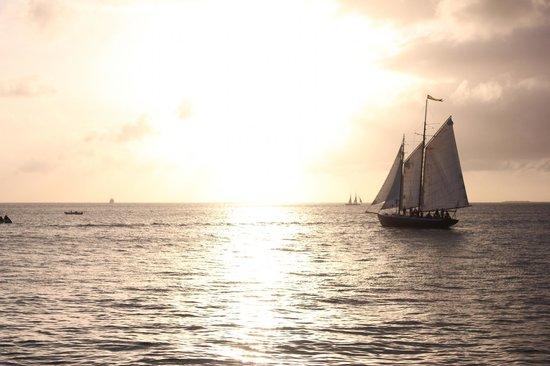 The Schooner Hindu, Hindu Charters: The Hindu sailing past Mallory Square 12/25/12