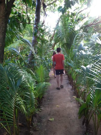 Casa Iguana: Paths through the grounds