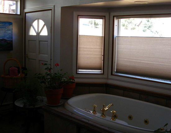 The Animas B&B at the Wingate House : Kohler Jacuzzi for 2