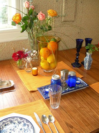The Animas B&B at the Wingate House : Citrus & cobalt blue