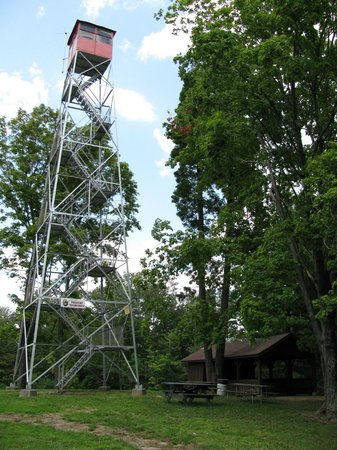 Fire Tower Picture Of Tar Hollow State Park Laurelville