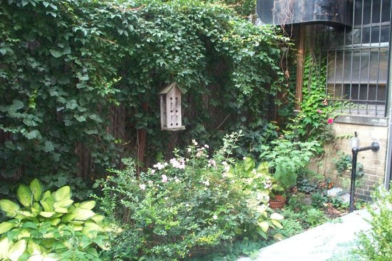 Le jardin du Leo House