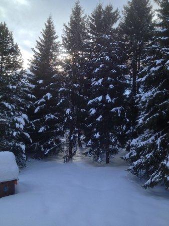 Turmhotel Victoria Davos: Vue depuis la chambre