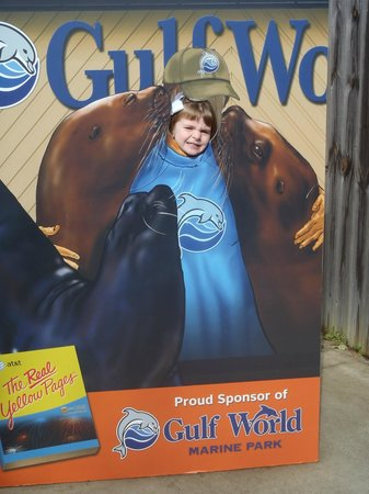 Gulf World Marine Park: Inside Gulf World