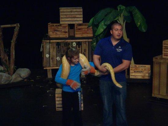 Gulf World Marine Park: Reptile Show (Huge Snake)