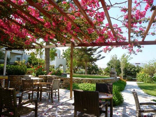 Birikos Studios: veranda