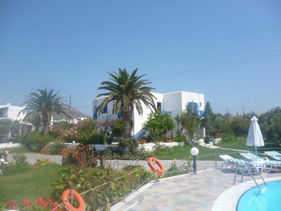 Birikos Studios : pool area