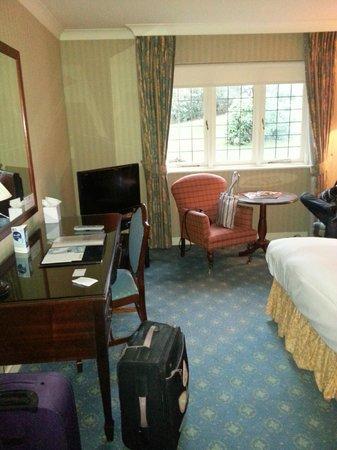 Ramada Resort Cwrt Bleddyn Hotel & Spa: Standard room - nice size
