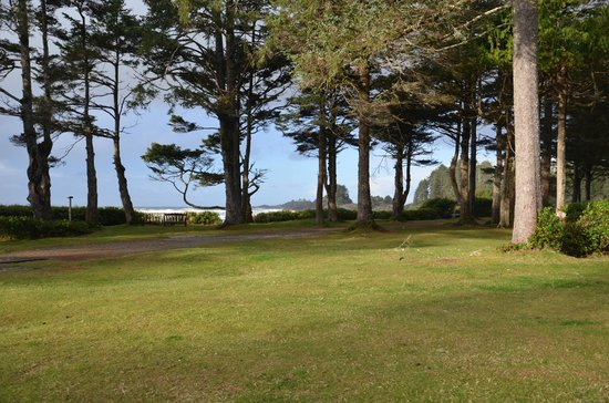 Pacific Sands Beach Resort: Lots of wide open space to walk or children to play!