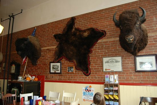 Doe Brothers : Buffallo, Brown Bear just part of the decor.