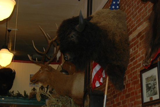 Doe Brothers: Buffallo Elk, and heaps of real antiques cover walls and shelves