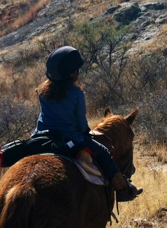 Circle Z Ranch: Setting out - a new rider