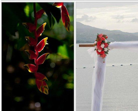Sunset Beach Resort, Spa & Water Park: Beautiful flowers/wedding site