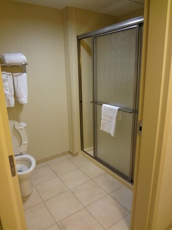 Homewood Suites Hagerstown: Studio Bathroom