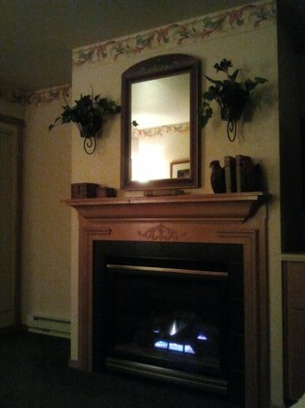 Homestead Suites: gas fireplace