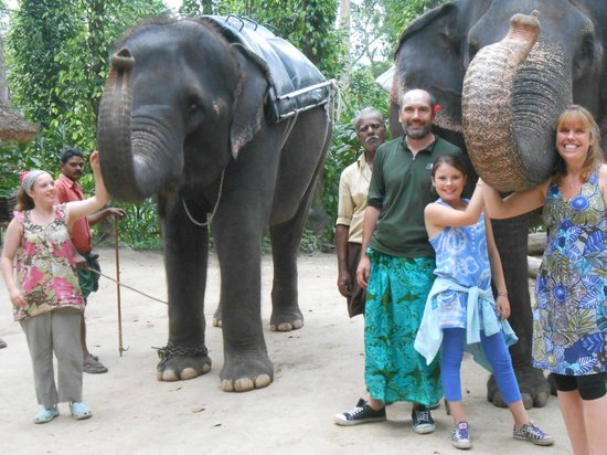 Kerala House: Shibu introduced us to the elephants