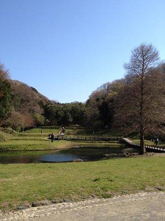 Shinbayashi Park