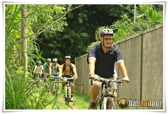 Bamboo Forest Picture Of Bali Countryside Cycling Tour Ubud