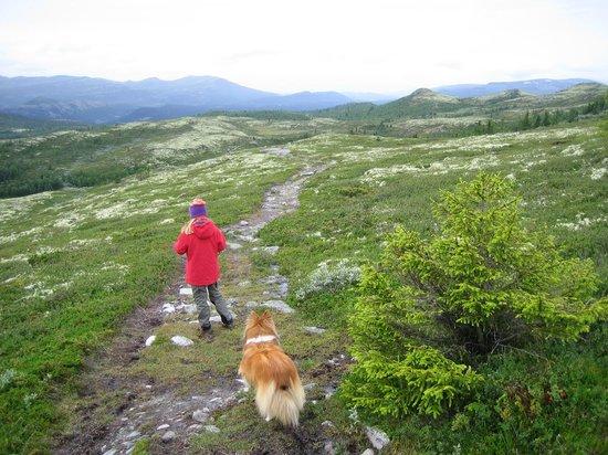 Spidsbergseter Resort Rondane: Ved Flaksjølihøgda