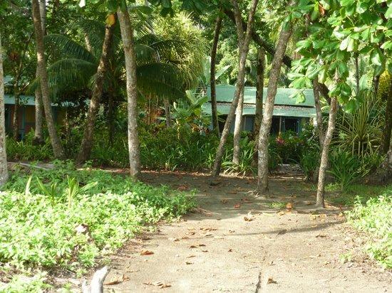 Cabinas Los Cocos: cabins from beach
