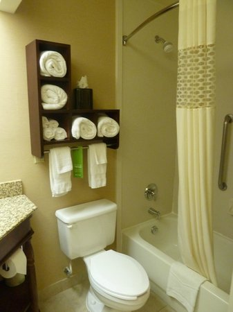 Hampton Inn Atlanta/Newnan : Bathroom