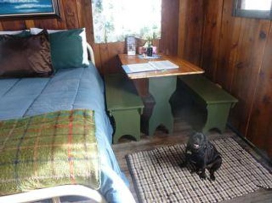 La Paloma Hot Springs & Spa: pet friendly cabin at La Paloma