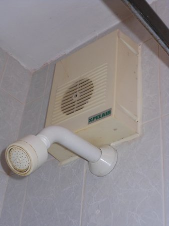 Auburn Lodge Hotel & Leisure Centre: Dirty Shower