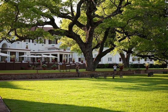 The Victoria Falls Hotel: The beautiful grounds