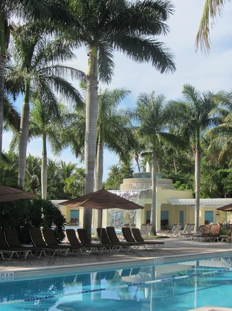 Hyatt Regency Coconut Point Resort & Spa: Pool View