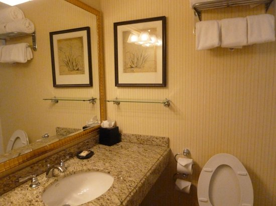 The Read House Historic Inn And Suites: Bathroom