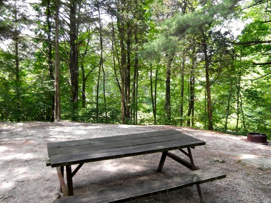 Panther Lake Camping Resort: Camp Site