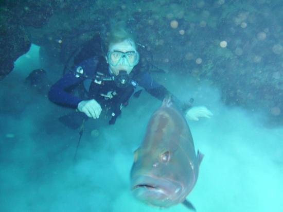 Reef Divers Cayman Islands: me and the grouper
