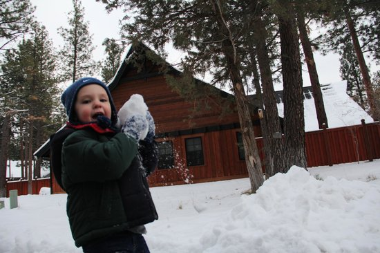 Five Pine Lodge & Spa: Snowball fight outside of Lodge