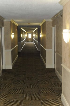 Holiday Inn Ft. Lauderdale Airport: Hallway