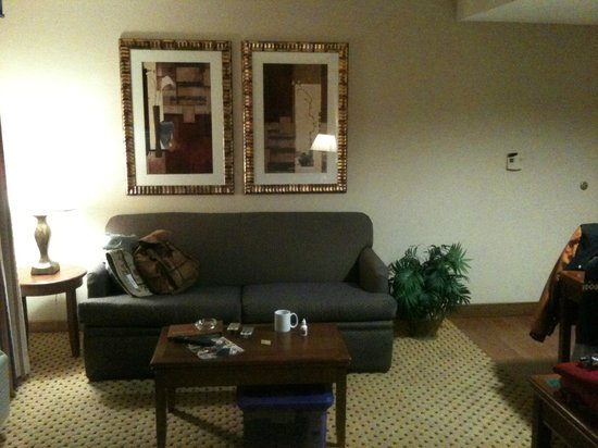 Homewood Suites by Hilton Laredo at Mall del Norte: Estancia
