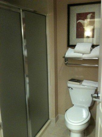Homewood Suites by Hilton Laredo at Mall del Norte: Baño