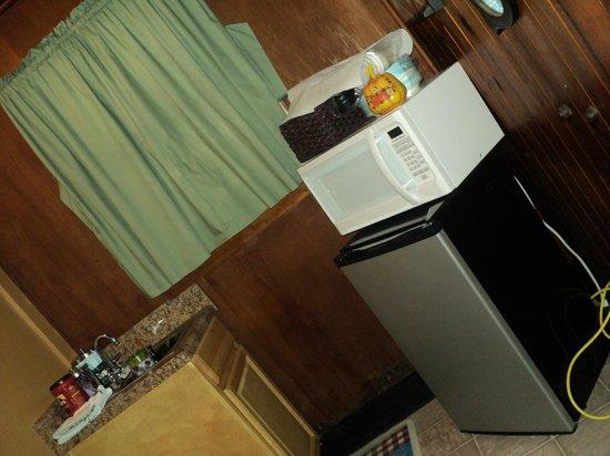 Brevard Inn and Cabins: Kitchen