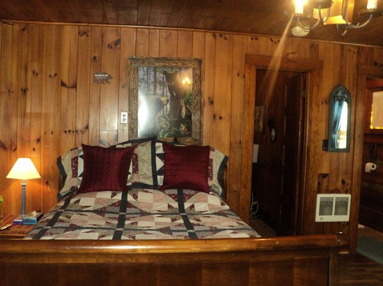 Brevard Inn and Cabins: Queen bed