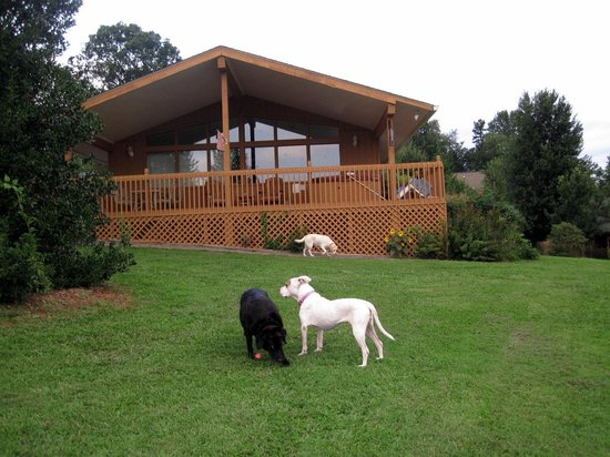 Barkwells, The Dog Lovers' Vacation Retreat: this is the Diva Cabin