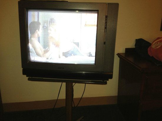 LeConte View Motor Lodge: Retro TV sort of worked