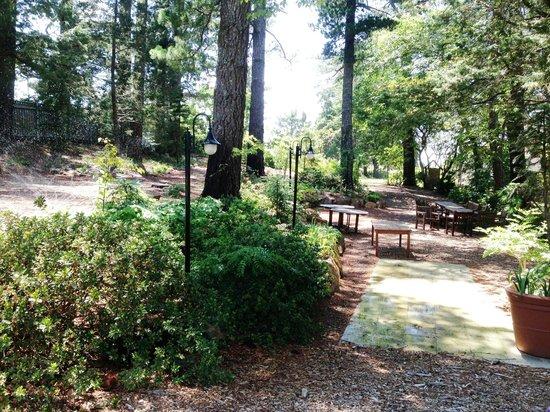 إيكوز بوتيك هوتل آند ريستيورانت: lilianfels picnic ground ...