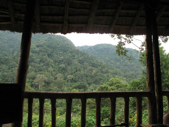 Gorilla Resort Camp: view from dining area - mountains where you do gorilla trekking.