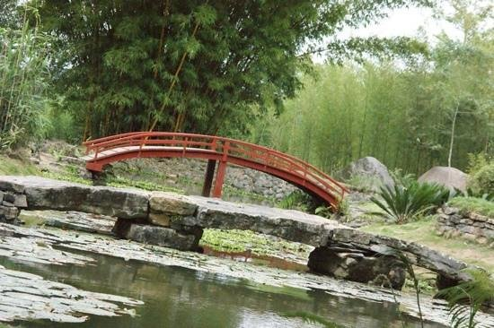 The peaceful japanese garden picture of cahuita national for Jardin lankester