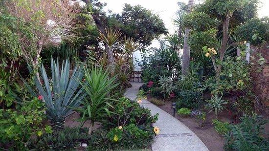 El Sol La Vida: Pathway to our room