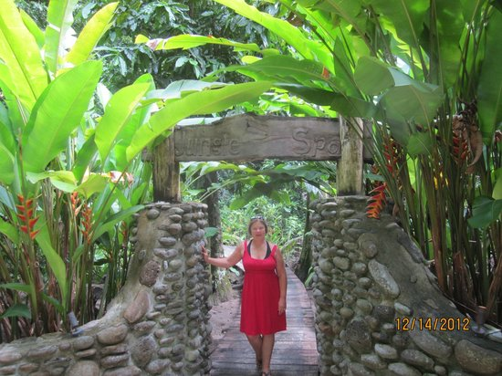 คาเมีย รีสอร์ท แอนด์ สปา: The Spa entrance