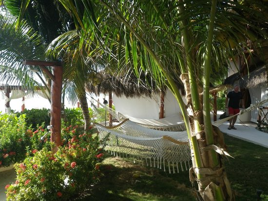 El Dorado Maroma, a Beachfront Resort, by Karisma: hammocks in the beach area