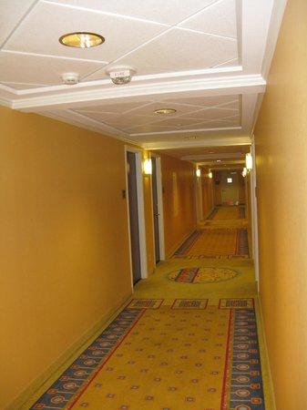 DoubleTree by Hilton Hotel Greensboro: Hallway