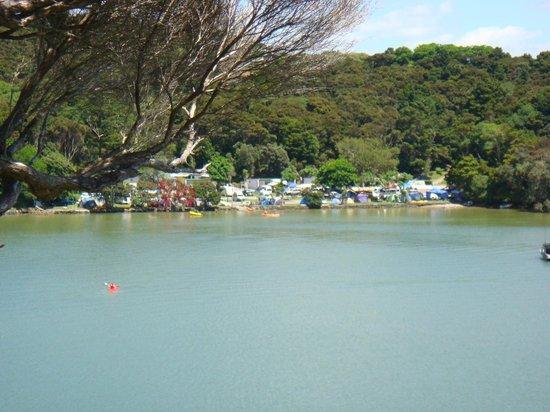 Paihia TOP 10: Camping Ground
